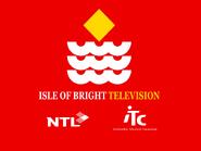 Isle of Bright retro startup 1995