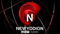 Newyddion 2005
