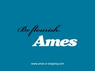 Ames TVC 2003