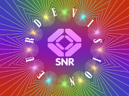 Eurdevision SNR ID 1991