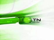 TN Cultura ID 2007