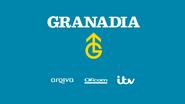 Granadia startup slide recreation 2015