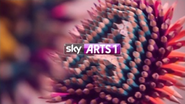 Sky Arts 1 ID - Sharpen - 2012