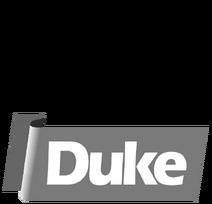 TVNE Duke 1980 logo (2020)