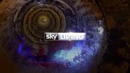 Sky Living Bones 2013 ID