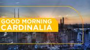 Good Morning Cardinalia 2011 opening