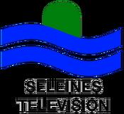 Seleines Television 1975 logo