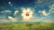 NTV7 11 years 2