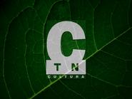 TN Cultura ID - 1998 - 3
