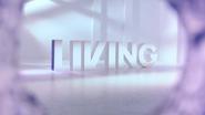 Living ID - Bullet Hole - 2009