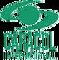Caracol Internacional
