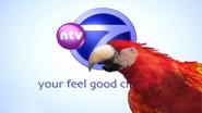 NTV7 ID - Parrot - 2004