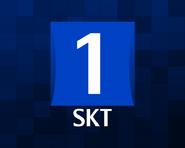 SKT1 2001 ID
