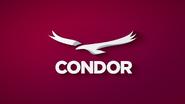 Condor Network - ID 2014
