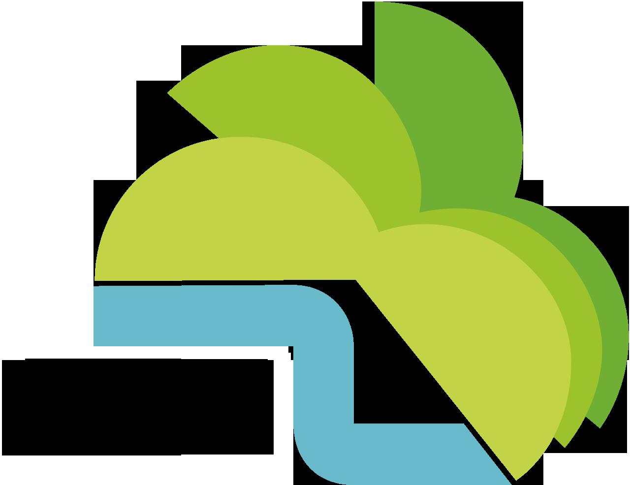 Swn-Nett Online-Portal