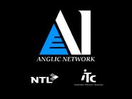 Anglic Network startup slide 1995