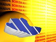 BDMR 1999