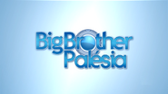 Big Brother Palesia open 2015