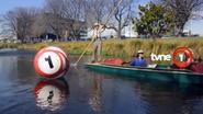 Tvne1 id boat 2016
