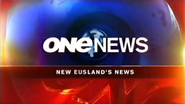 One News 2008