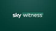 Sky Witness Generic ID 2020