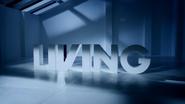 Living ID - Crash - 2009