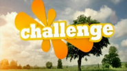 Challenge ID 2008 2