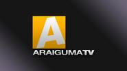 Araiguma TV 1995 HD Remake