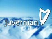 Juvernian ID Christmas 1997