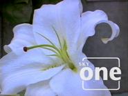 Sky One ID - Lily - 1998