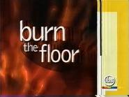 IBS Burn the Floor 1999