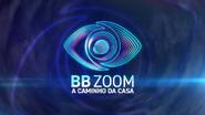 BB Zoom open 2020