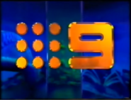 Channel 9 Southwall 1989