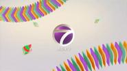 NTV7 Chinese ID 2017
