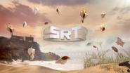 SRT ad id - Shells - 2018