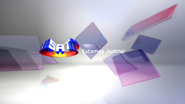 SRT ID 2013 2