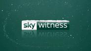 Sky Witness break bumper Christmas 2018