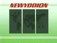 Newyddion 1986