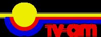 TVAM 1981