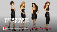 M9 promo - Desperate Housewives - 2020