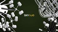 Sky Two ID - Carnival - 2004