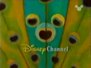 Disney Channel ID - Peacock (1999)
