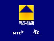 Northesian retro startup 1995