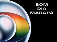 BDMR slide 1989
