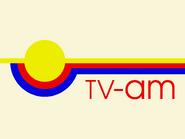 TV-AM 1981