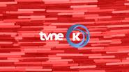 TVNE Kidzone ID - Interim - 2016