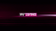 Sky Living ID - Subway - 2011