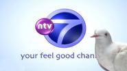 NTV7 ID - Pidgeon - 2004