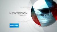 Newyddion 2010