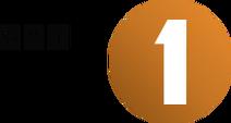 GRT Radio 1 2013